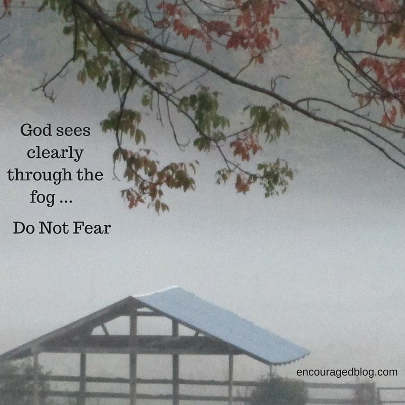 Misty, low, damp, dark, days